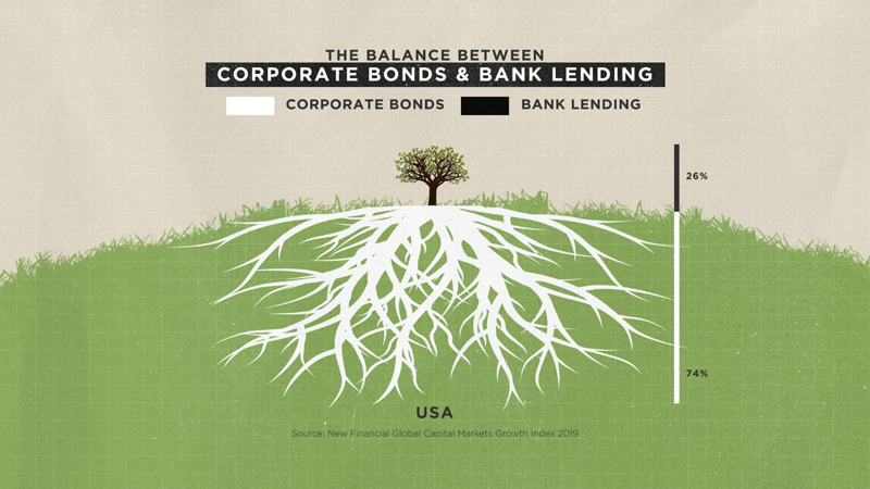 U.S. Capital Markets Critical to Lending in the U.S.
